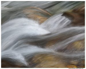 Stevens Creek, Mount Rainier National Park, Washington State, Summer 2015