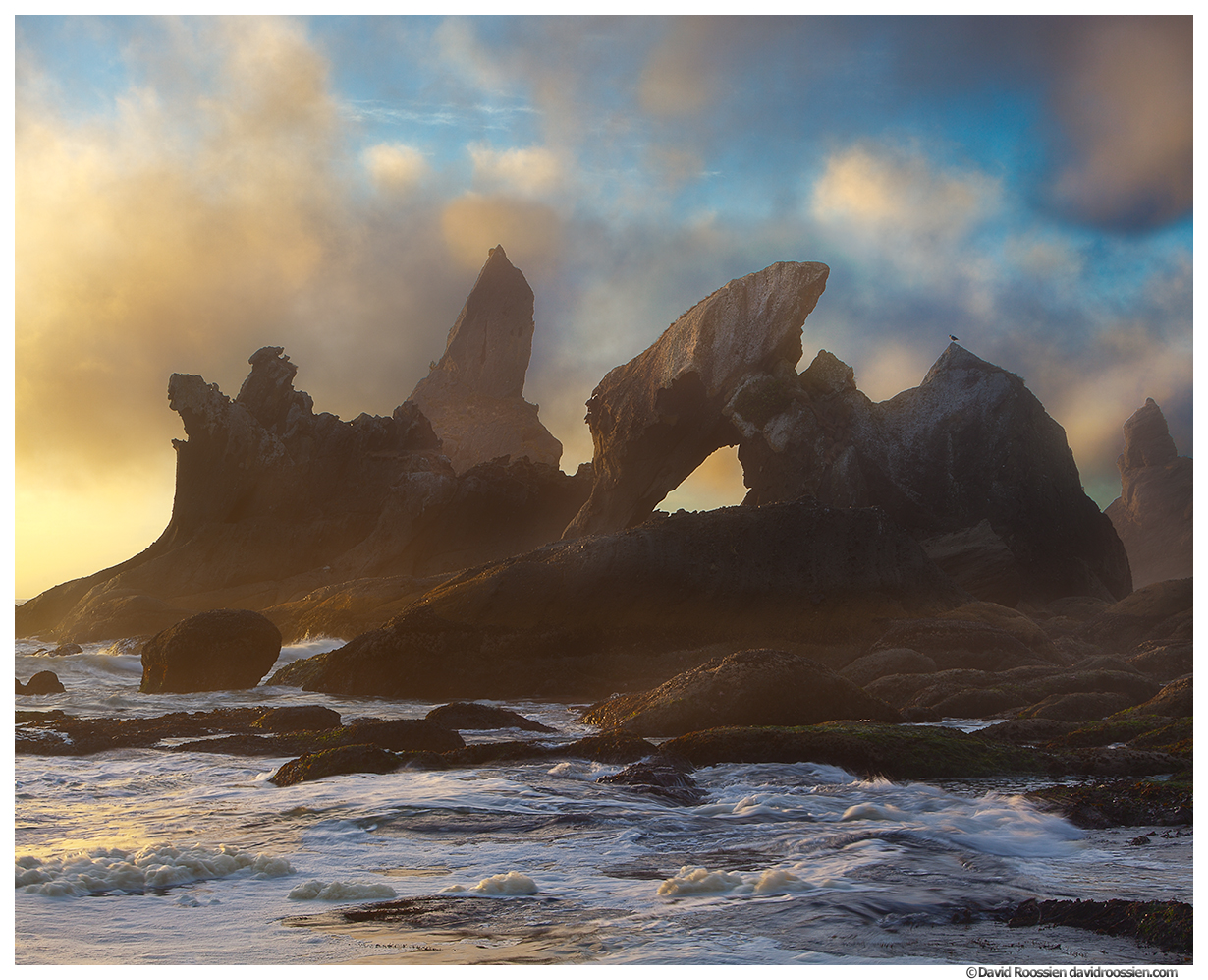 Jurassic Pinnacles, Shi Shi Beach, Olympic Peninsula