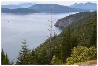 Sares Head and Burrows Bay, Rosario Beach, Fidalgo Island, Washington
