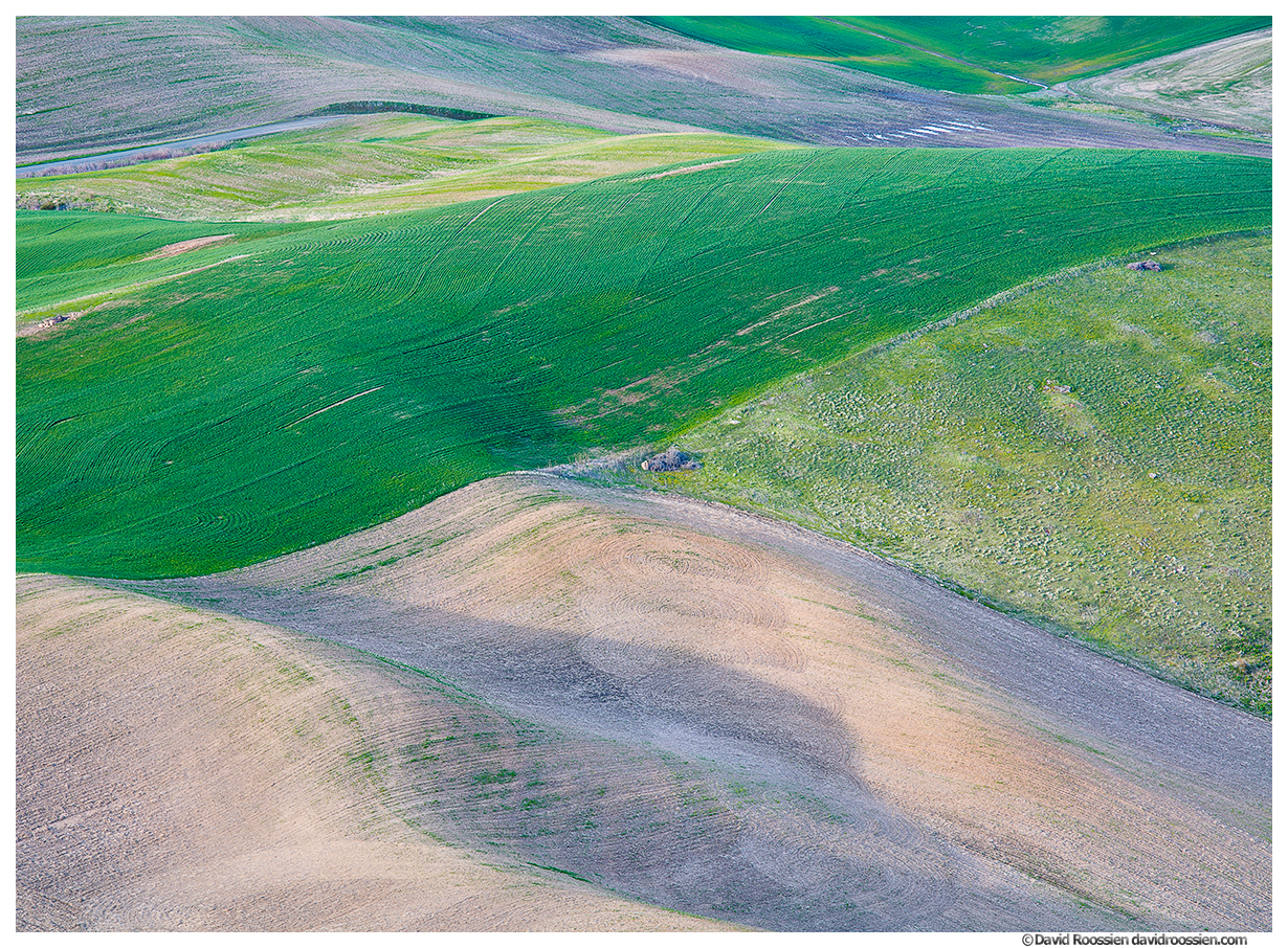 Palouse Layers, Washington State, Spring 2017