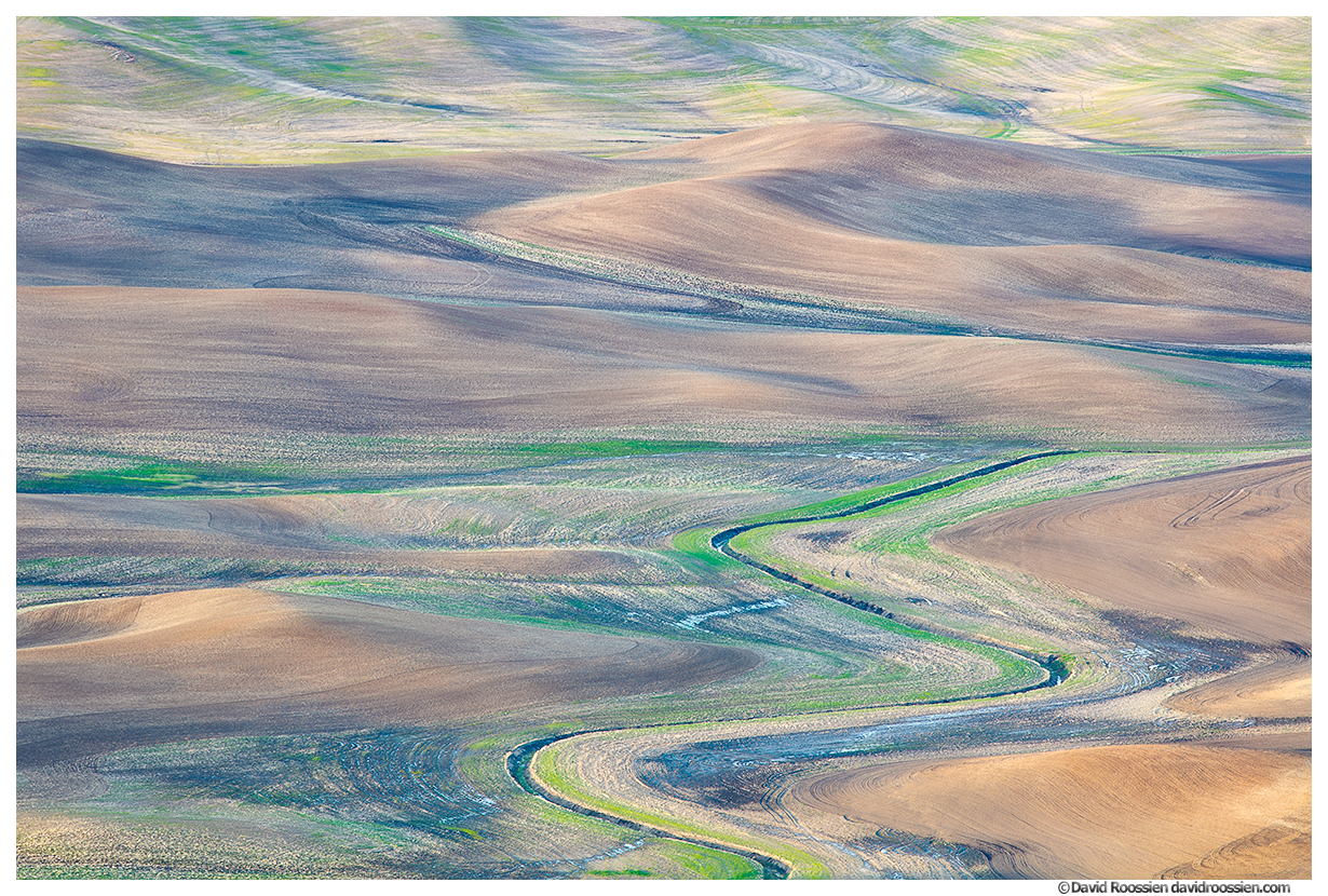 Palouse Pastels, Farms and Hills, Washington State, Spring 2017