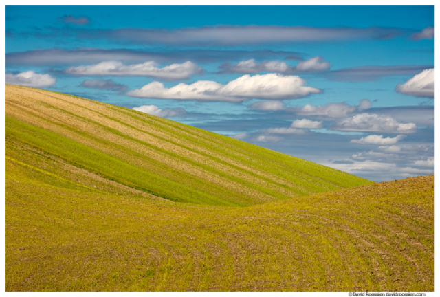 Green Hill and Pointed Clouds, Palouse, Washington State, Spring 2017