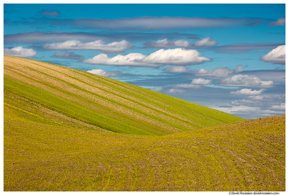 Green Hill and Clouds Traveling Over Palouse, Colfax, Washington State