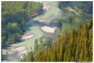 Middle Fork Snoqualmie River From Mount Si, Spring 2017
