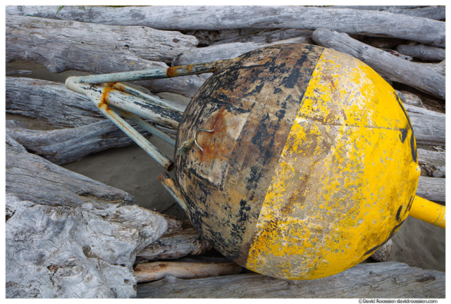 Lost Asian Buoy, Second Beach, Olympic National Park, Washington State. Spring 2017