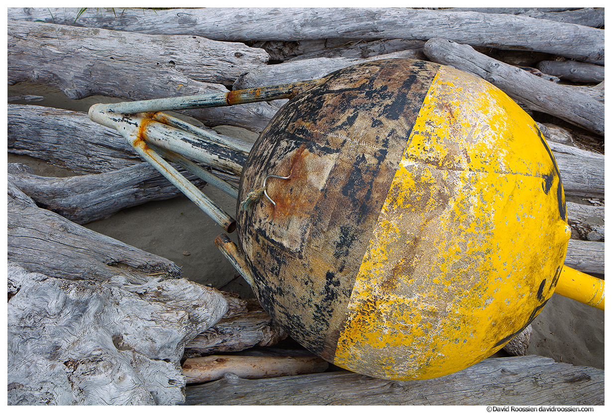 Lost Asian Buoy, Second Beach, Olympic National Park, Forks, Washington State