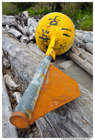 Lost Asian Buoy, Second Beach, Olympic National Park, Washington State