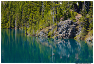 Diving Into Lake Constance, Olympic National Park, Brinnon, Washington, Summer 2017
