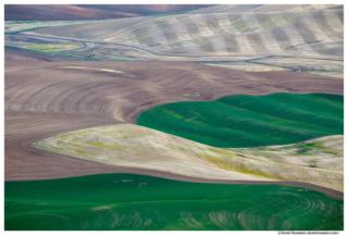 Rolling Ribbons, Steptoe Butte, Palouse Region, Colfax, Washington