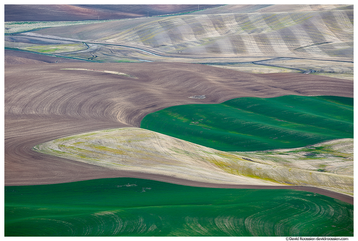 Rolling Ribbons, Steptoe Butte, Palouse Region, Colfax, Washington