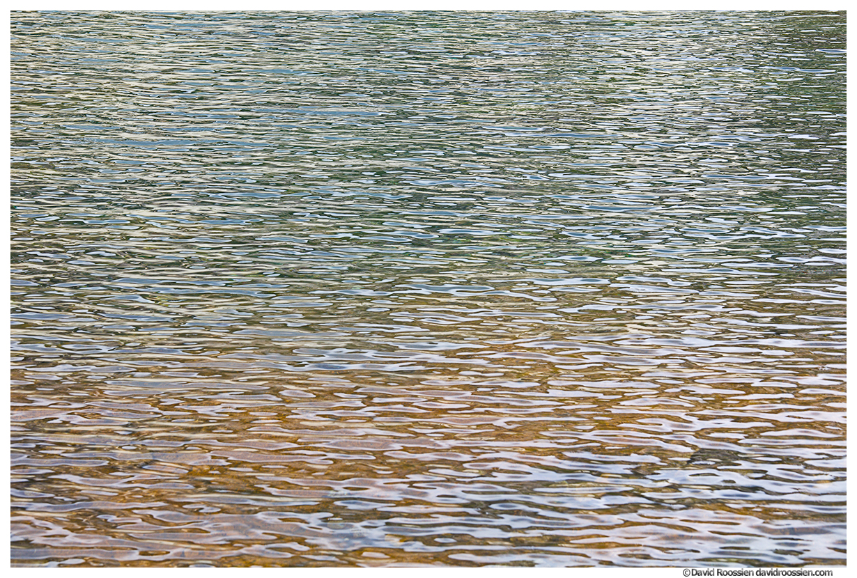 Wavelets, Marmot Lake, Snoqualmie Region, Washington