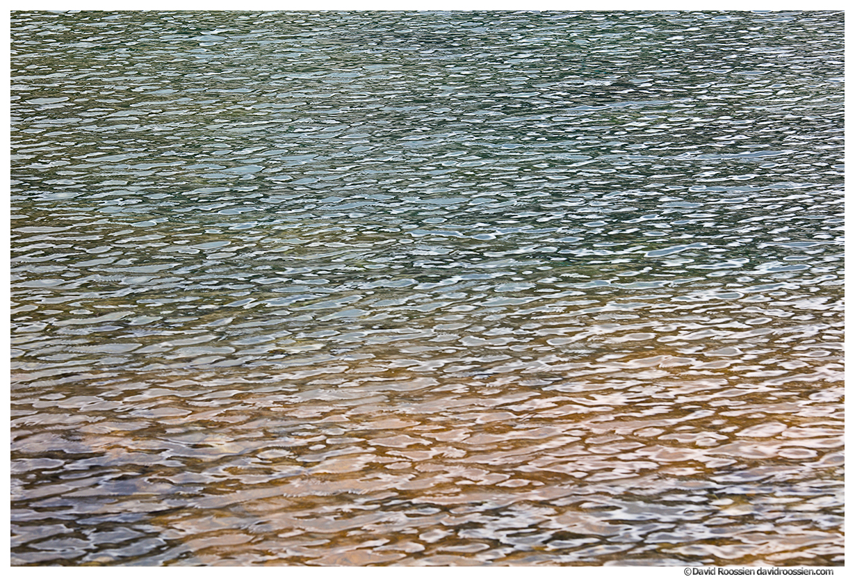 Wavelets #2, Marmot Lake, Snoqualmie Region, Washington State