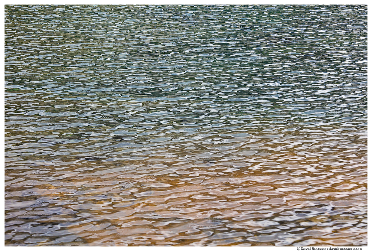 Wavelets #3, Marmot Lake, Snoqualmie Region, Washington State