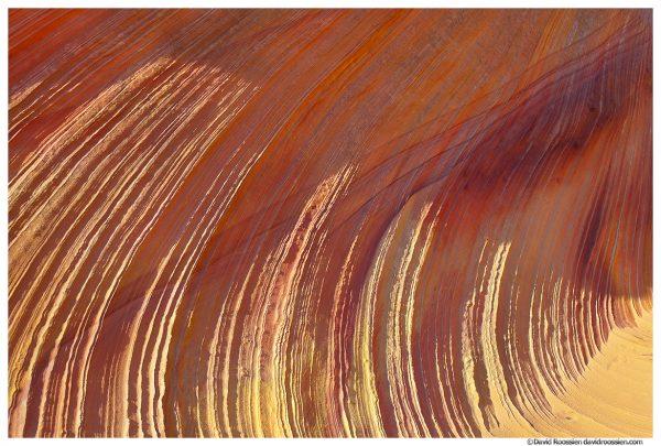 Sunlit Sandstone Ridges, Coyote Buttes, Vermillion Cliffs National Monument, Spring 2014