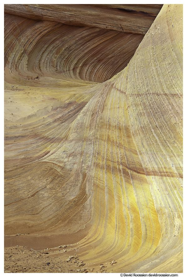 Second Wave, South Coyote Buttes, Cottonwood Cove, Vermillion Cliffs National Monument, Spring 2014