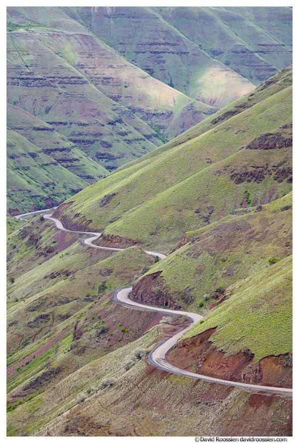 Curves in Paradise, Washington Oregon Border, Spring 2017