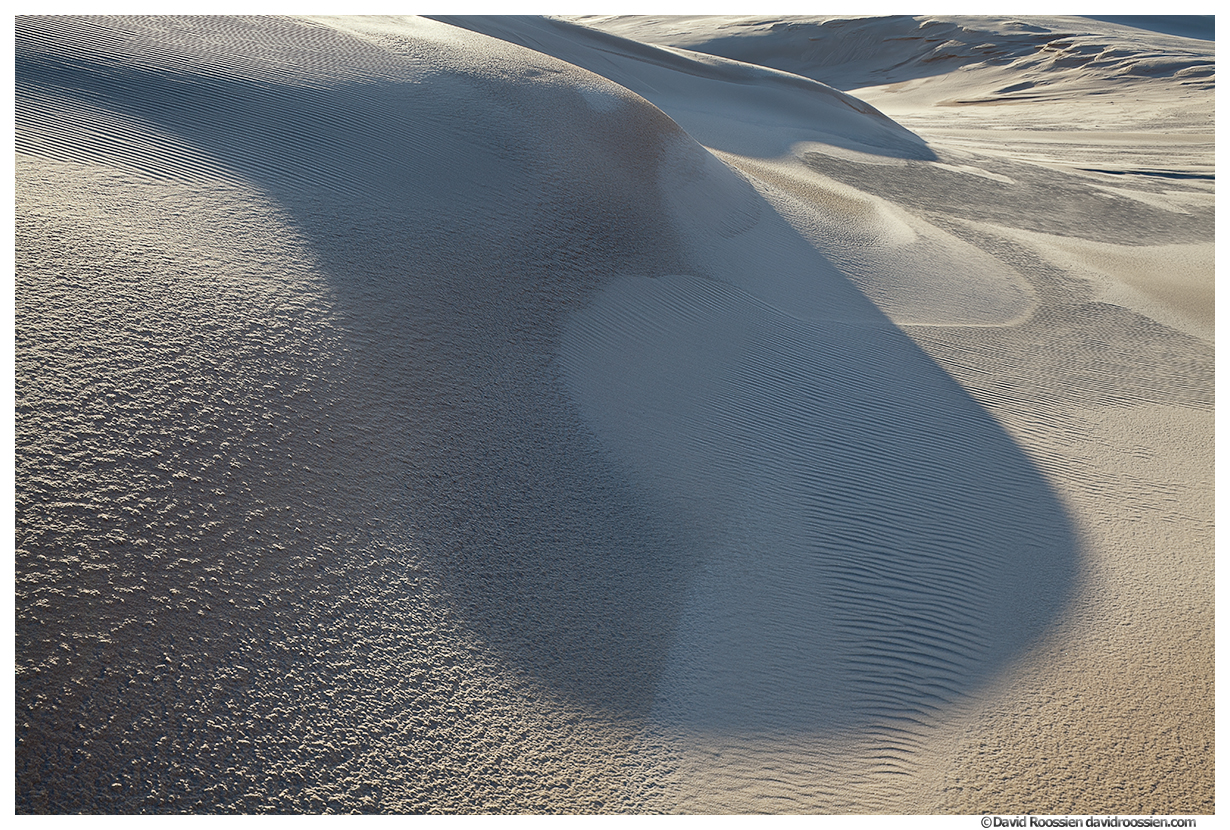 Spoon Shaped Shadow, Silver Lake Sand Dunes, Silver Lake State Park, Lake Michigan