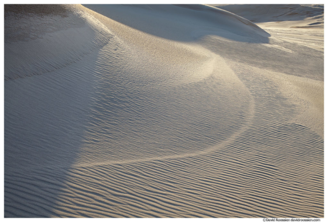 Textured Dune, Silver Lake Sand Dunes, Lake Michigan