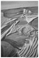Marbled Dune, Silver Lake Sand Dunes, Lake Michigan