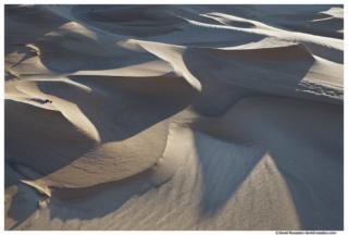 Sand Shadows, Silver Lake Sand Dunes, Oceana County, Lake Michigan