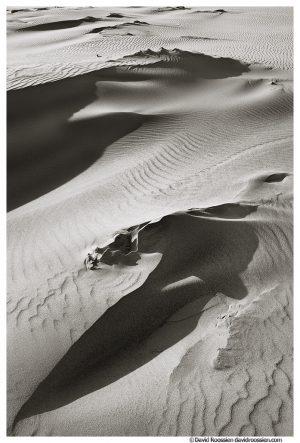 Dune, Oceana County, Michigan