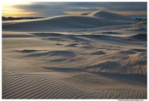 Defiant Dune, Silver Lake Sand Dunes, Oceana County, Lake Michigan