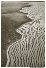 Edge of the Dune, Silver Lake Sand Dunes, Michigan