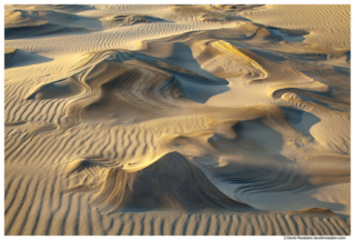 Sculpted Dune, Silver Lake Sand Dunes, Michigan
