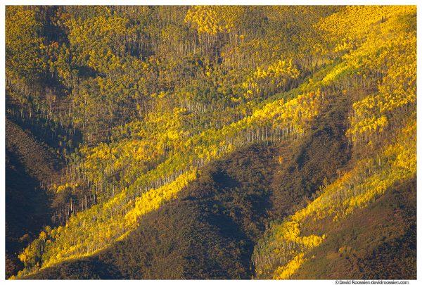 Golden Hill, Aspen, Colorado