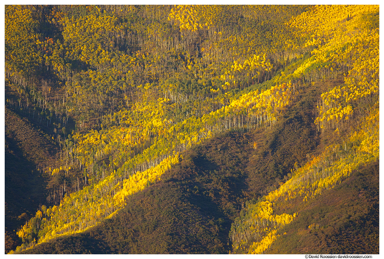 Golden Hill, Aspen, Colorado