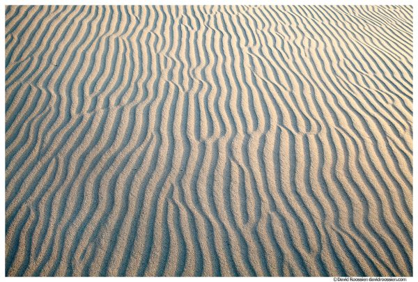 Sand Maze, Silver Lake Sand Dunes, Silver Lake State Park, Oceana County, Michigan, Spring 2016