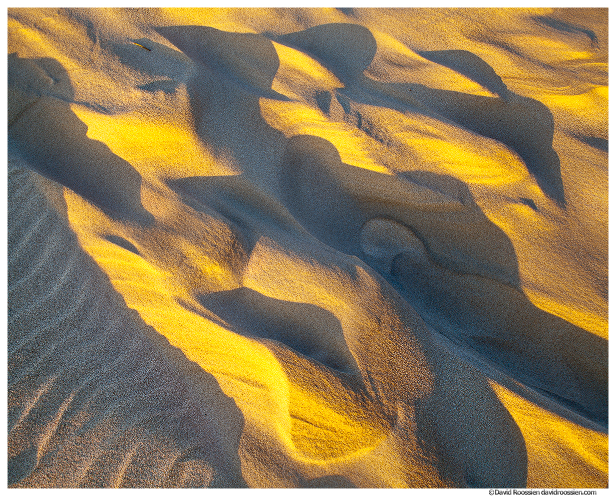 Shadows and Light, Silver Lake Sand Dunes, Silver Lake State Park, Oceana County, Michigan, Spring 2016
