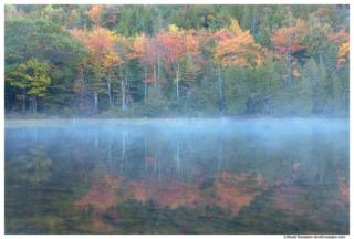 Fall Reflection, Bubble Pond,  Acadia National Park, Maine
