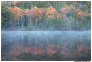 Misty Reflection, Bubble Pond, Acadia National Park, Maine