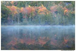 Misty Reflection, Bubble Pond, Acadia National Park, Maine