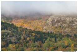 Marine Layer over Penobscot Mountain, Acadia National Park, Maine