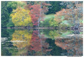 Colorful Reflection, Long Pond, Acadia National Park, Maine