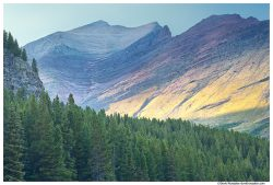 Wilbur Mountain, Swiftcurrent Lake, Glacier National Park, Montana