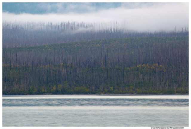 Lake McDonald Layers. Glacier National Park, Montana