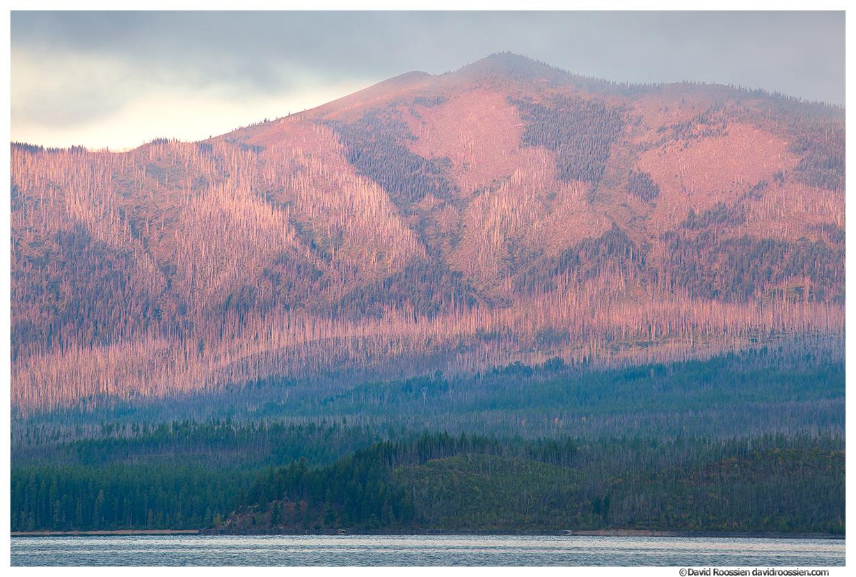 Pink Sunrise Light on Apgar Mountains, Lake McDonald, Glacier National Park, Montana