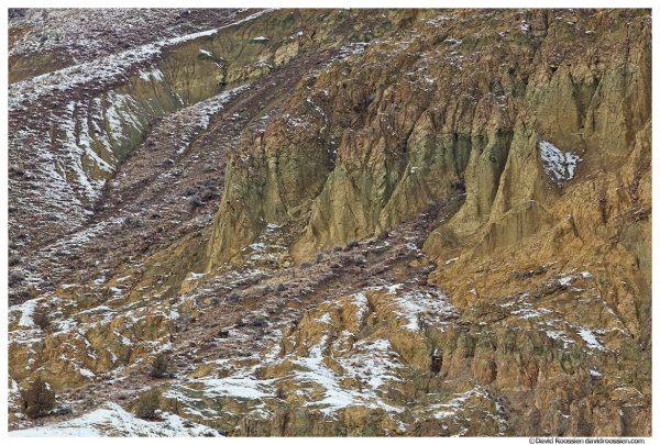 Snow Dusted Cliffs, Blue Basin, John Day River