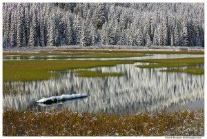 Tucquala Lake Reflection, Cle Elum