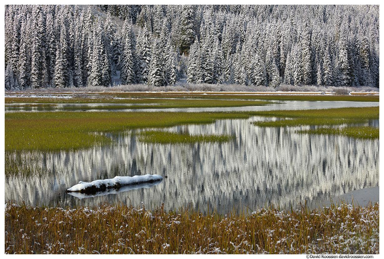 Tucquala Lake Reflection, Cle Elum, Washington State