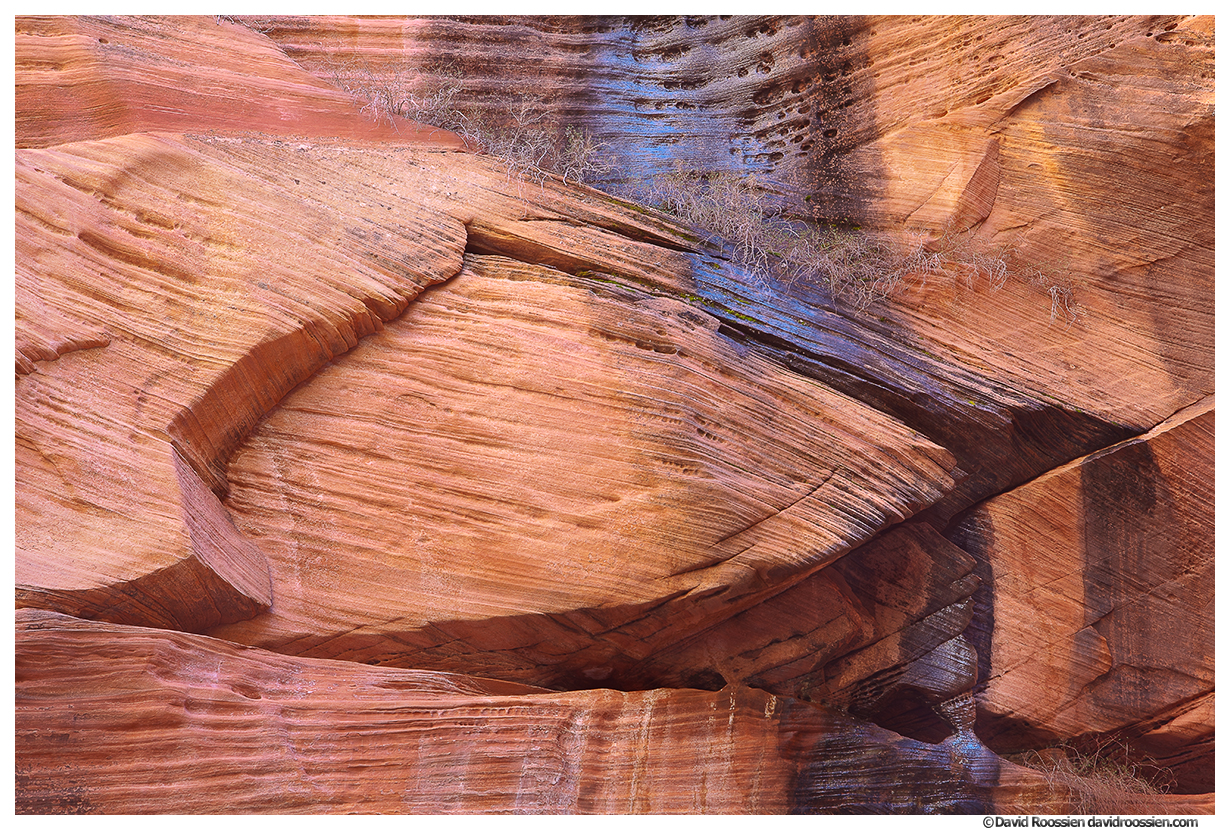 Desert Varnish, Kolob Canyons, Zion National Park