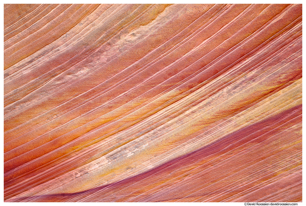Sandstone Ridges, South Coyote Buttes, January 2021